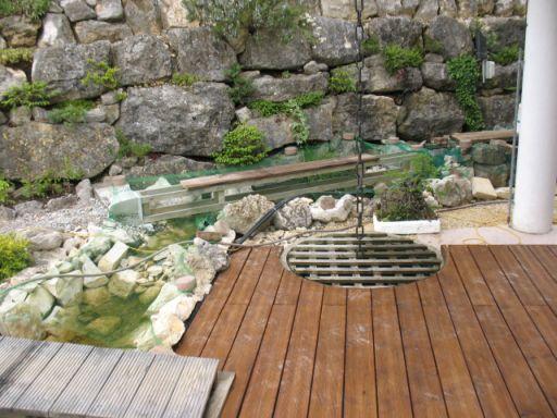 Fischteich mit bachlauf seite 3 forum froschnetz for Fischteich schutz
